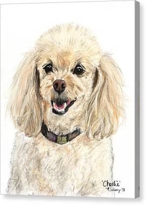 Miniature Poodle Painting Champagne Canvas Print