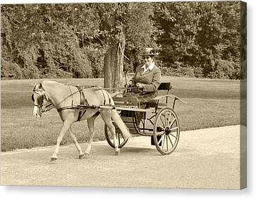 Miniature Two Wheel Cart Canvas Print by Wayne Sheeler