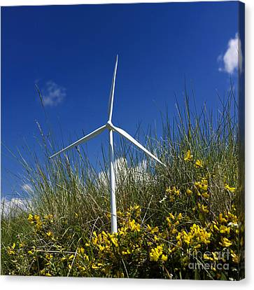 Miniature Wind Turbine In Nature Canvas Print by Bernard Jaubert