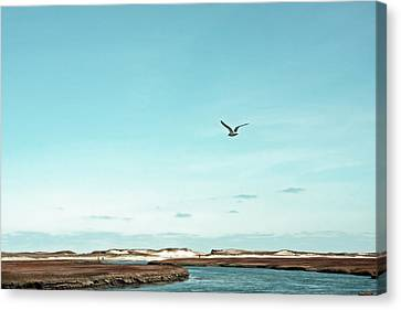 Minimalist Blue And Brown Seascape Canvas Print by Brooke T Ryan