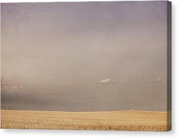Minimalist Landscape Of A Prairie Grain Canvas Print by Roberta Murray