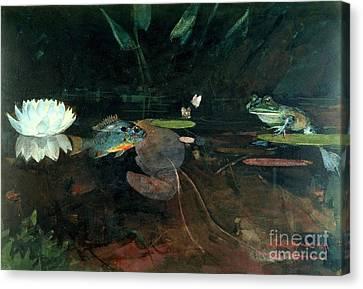 Mink Pond Canvas Print