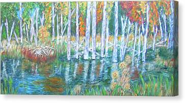 Minnesota Autumn Canvas Print by Carolyn Donnell