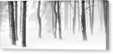 Minus Five Canvas Print by Janet Burdon