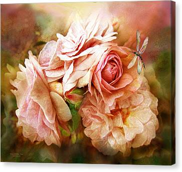 Peaches Canvas Print - Miracle Of A Rose - Peach by Carol Cavalaris