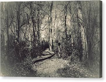 Mirkwood Canvas Print