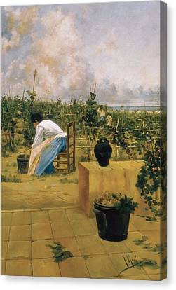Miro I Argenter, Joaquim De 1849-1914 Canvas Print by Everett