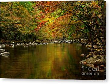 Canvas Print featuring the photograph Mirror Fall Stream In The Mountains by Debbie Green