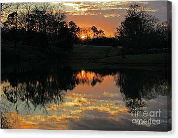Mirror Image  Canvas Print by Jinx Farmer