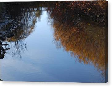 Canvas Print featuring the photograph Mirror Image by Ramona Whiteaker