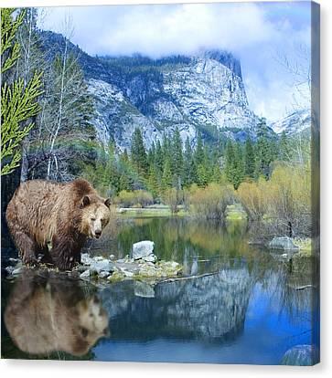 Mirror Lake Bear Canvas Print by Alixandra Mullins