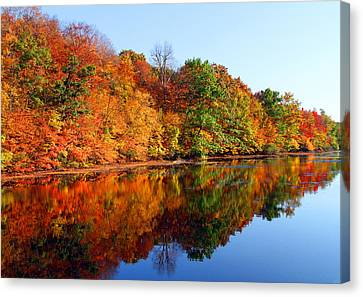 Mirrored Palette Canvas Print by James Hammen