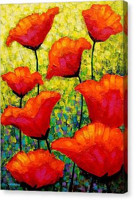 Mischa's Poppies Canvas Print by John  Nolan