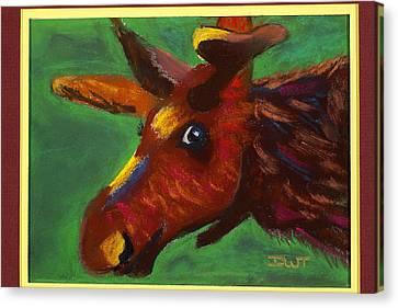 Mischievous Moose Canvas Print by Diana Tripp