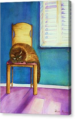 Kitty's Nap Canvas Print