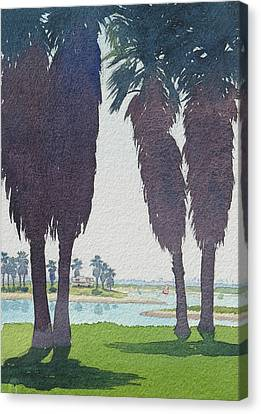 Mission Bay Park With Palms Canvas Print by Mary Helmreich