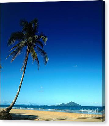 Mission Beach And Dunk Island Canvas Print