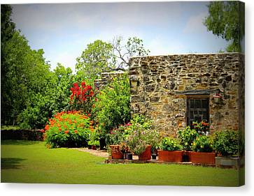 Mission Espada - Garden Canvas Print by Beth Vincent