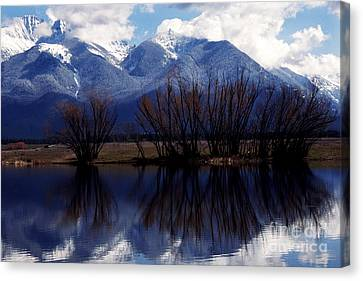 Mission Mountains Montana Canvas Print by Thomas R Fletcher