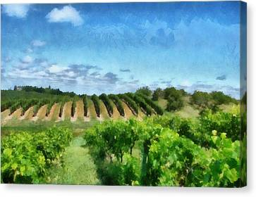 Mission Peninsula Vineyard Ll Canvas Print by Michelle Calkins