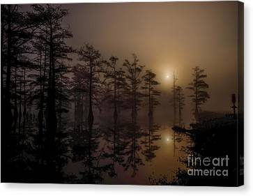 Mississippi Foggy Delta Swamp At Sunrise Canvas Print by T Lowry Wilson