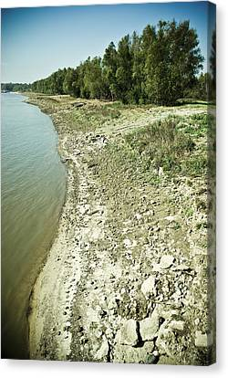 Mississippi River In Louisiana Canvas Print by Ray Devlin