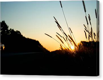 Canvas Print featuring the photograph Missouri Morning by Jon Emery