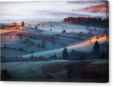 Mist Canvas Print by Amir Bajrich