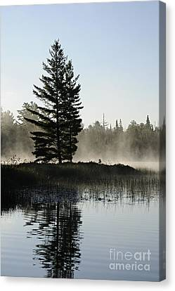 Mist And Silhouette Canvas Print by Larry Ricker