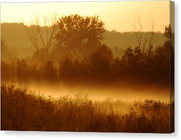 Mist Burning Off The Field Canvas Print