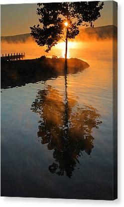 Mist On Fire Canvas Print by Steven Ainsworth