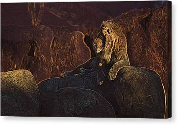Canvas Print featuring the photograph Mister Majestic by David Andersen
