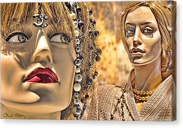 Mistrust Canvas Print by Chuck Staley