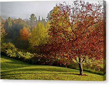 Canvas Print featuring the photograph Misty Autumn Morning by Alice Mainville