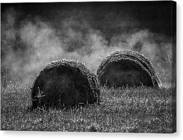 Misty Bales Canvas Print by Brian Stevens