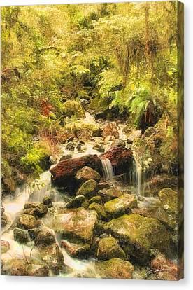 Misty Creek Canvas Print by Dale Jackson
