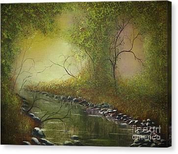 Misty Creek Canvas Print by Tim Townsend