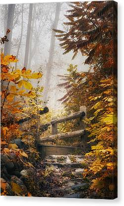 Misty Footbridge Canvas Print by Scott Norris