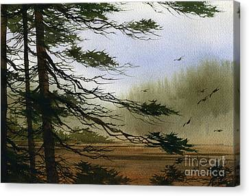 Misty Forest Bay Canvas Print by James Williamson