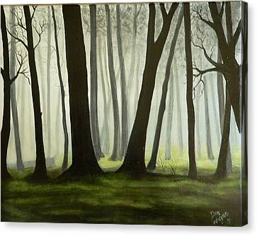 Misty Forrest Canvas Print by Dan Wagner