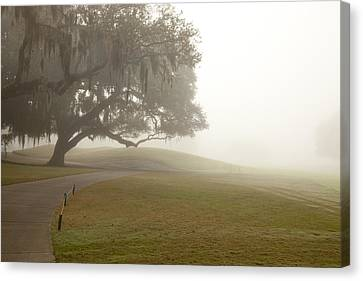 Misty Golf Course I Canvas Print by Barbara Northrup
