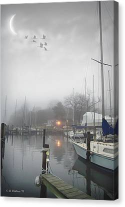 Misty Harbor Lights Canvas Print by Brian Wallace