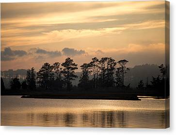 Canvas Print featuring the photograph Misty Island Of Assawoman Bay by Bill Swartwout