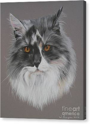 Misty Canvas Print by Joanne Simpson