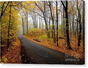Misty Minnesota Mile Canvas Print