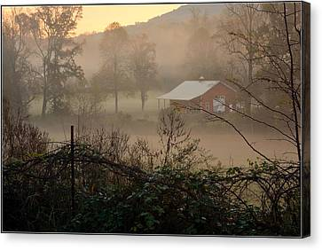 Misty Morn And Horse Canvas Print by Kathy Barney