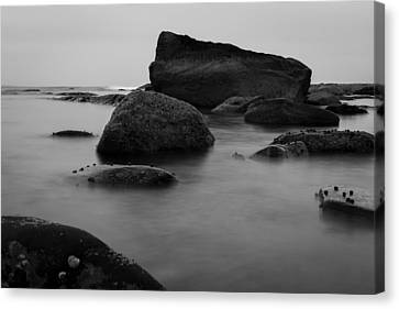 Misty Morning Canvas Print by Andrew Pacheco