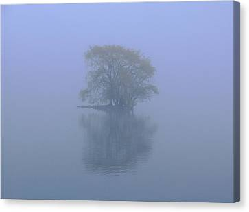 Misty Morning At Jamaica Pond Canvas Print by Juergen Roth