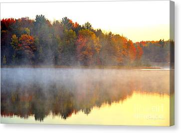 Misty Morning At Stoneledge Lake Canvas Print by Terri Gostola