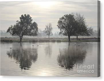 Misty Morning In Bushy Park London 2 Canvas Print